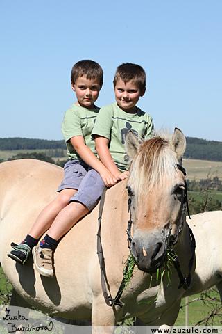 Dvojčata na koni